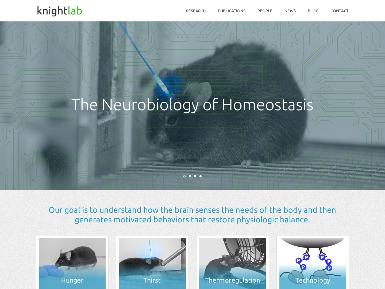 Knight Lab design responsive wordpress web design