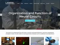 Lammel Laboratory