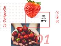 Webdesign strawberry