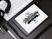 True Colors Photography Logo Design
