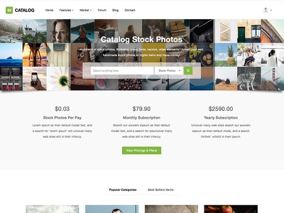 Catalog Stock Photo Marketplace - In Progress bootstrap html5 app showcase website showcase showcase photo stock photo marketplace