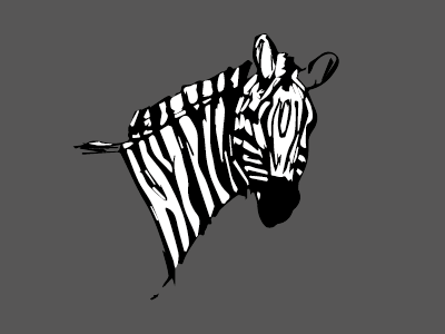 Random Zebra zebra