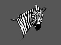 Random Zebra