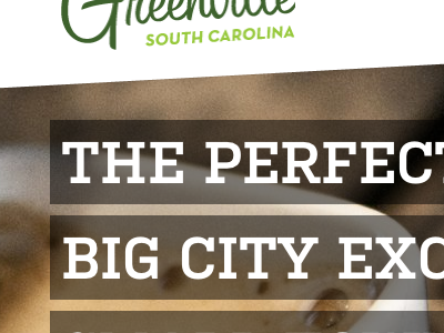 Life In Greenville Website texture typography