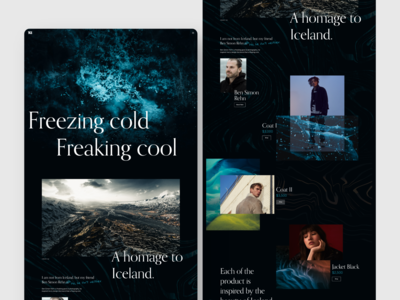 ICE webdesign web design design interaction design interaction ui ux iceland