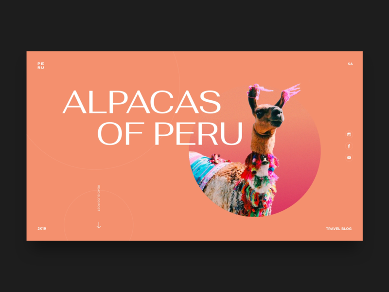 My Favourite Part of Peru ui llamas alpaca summer fun landingpage minimal travelblog travel peruvian peru