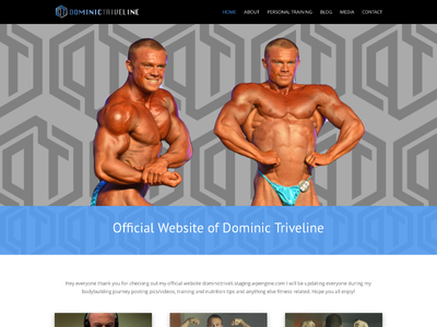 Dominic Triveline custom wordpress website css html wordpress