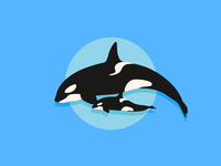 J50 Orca Whale & Baby