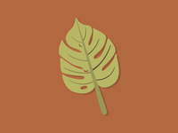 Philodendron Leafy