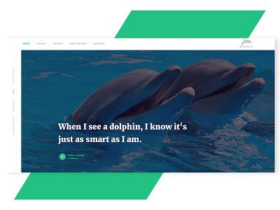 W.I.P  dolphinarium ux ui new best shot playing dolphin animals design creative
