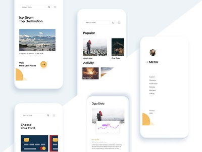 Travel App ux ui travel payment order detail date continue concept comment card booking
