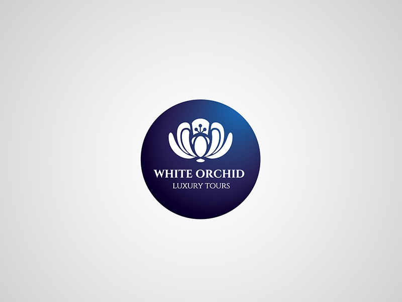 White orchid – logotype tours luxury circle purple logo design branding brand orchid flower logotype