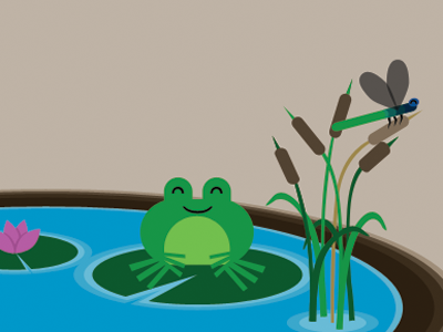 The Pond (Illustrated)