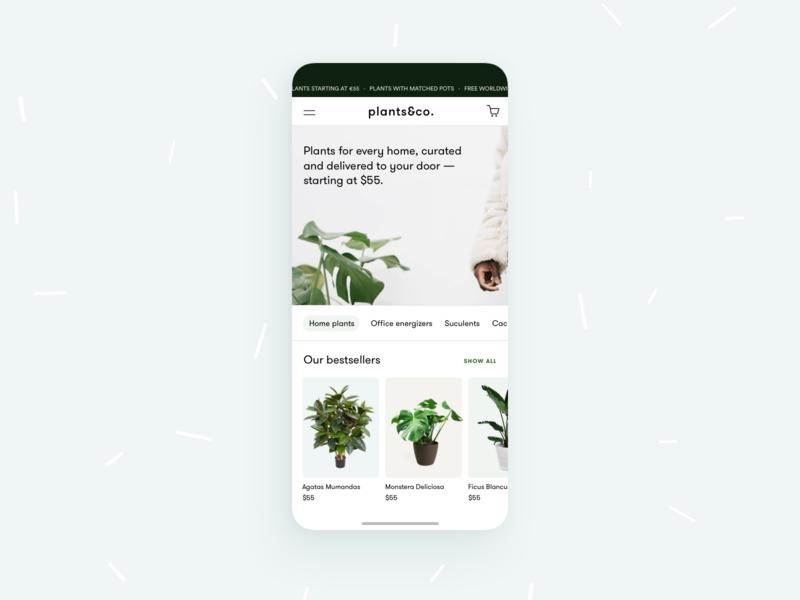 plants&co. - botanic E-Commerce 🌱 monstera plant greenery ui design web app green plants ux ui mobile woocommerce shopify store shop commerce ecommerce botanical