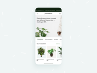 plants&co. - botanic E-Commerce 🌱