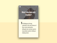 DailyUI #035 - Blog Post