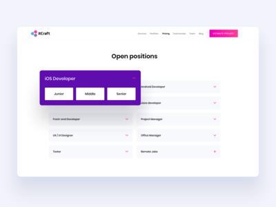 itCraft - Career Page