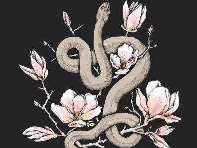 Magnolia and serpent illustration prints print design art print artwork artist art drawing illustration
