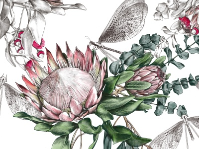 Protea botanical pattern design procreate art procreate textile pattern textile design pattern design pattern drawing illustration