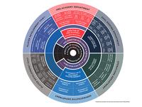 Infographic Chart