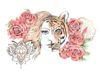 Zen Tigress Illustration