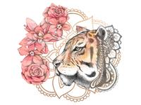 Zen Tigress Illustration