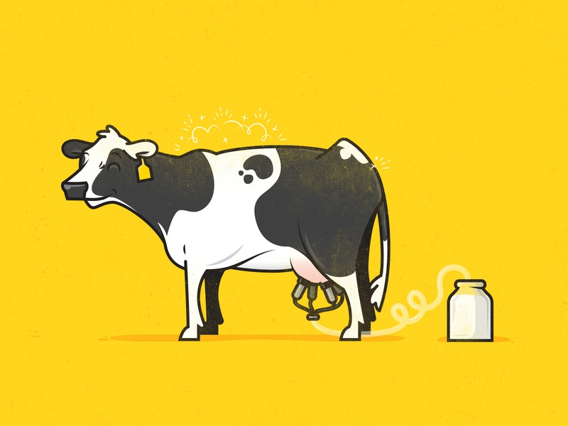 Dairy Cow sparkles clean holstein happy milk cow dairy vector illustration