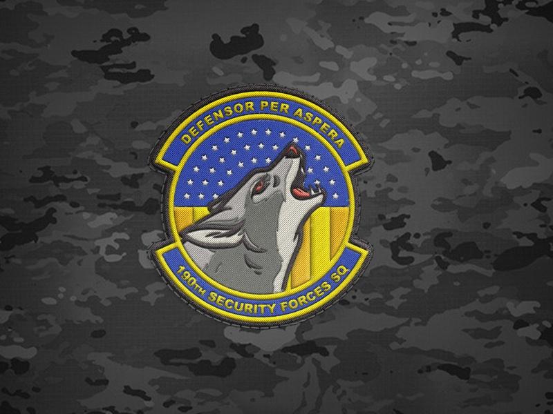 Coyote Unit Patch illustration coyote air force patch