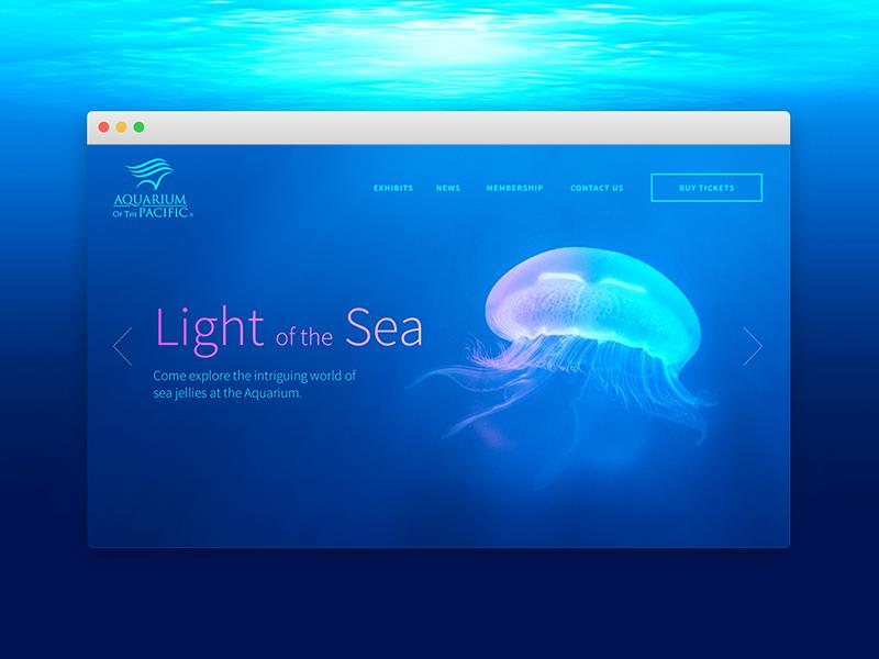 DailyUI 003 - Landing Page (Above the fold) redesign refresh aquarium of the pacific landing page 003 ui desktop design dailyui