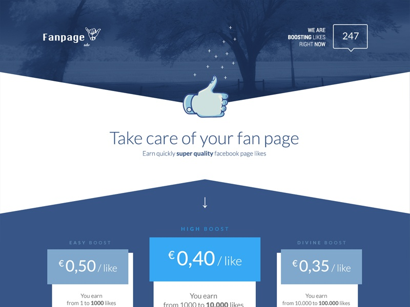 Landing page landing pricing pricing table homepage choose like facebook purchase fan page