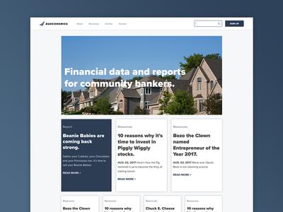 Banconomics Homepage and Logo Design