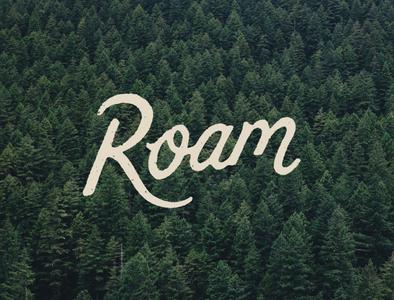 Roam branding script lettering roam screen printing hand drawn design type joe horacek typography little mountain print shoppe