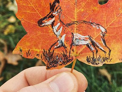 Autumn Pronghorn illustration inktober