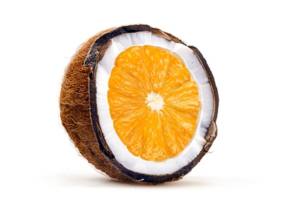 Cocorange illustration indestudio coconut orange
