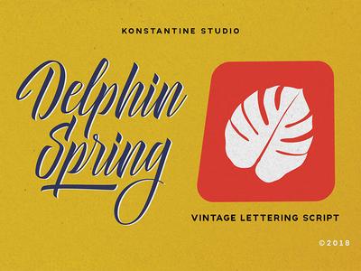 Delphin Spring - Vintage Script Font