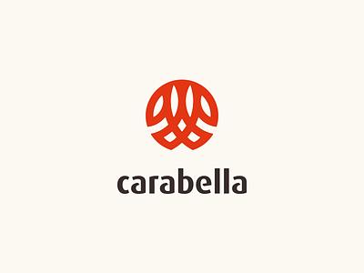 Carabella Logo grid abstract clean branding mark modern brand golden ratio logo