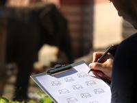 Elephant icons 🐘 / exploring and sketching ✏ grid zoo animals animal elephant brand icon logodesign identity mark logodesigner branding design designer logo