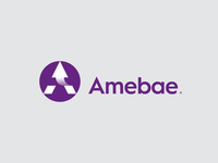 AMEBAE / SEO & Data Analysis