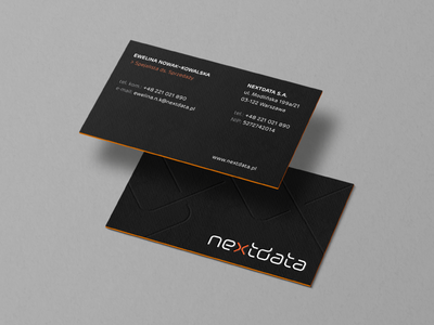 NEXTDATA / business cards
