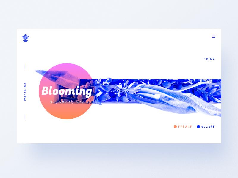 Blooming colorful ux wantline flat blooming clean blue ui web
