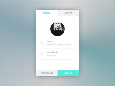 Sign In  ios minimal app modern ui password email profile sign in field login button