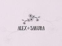 Alex Sakura
