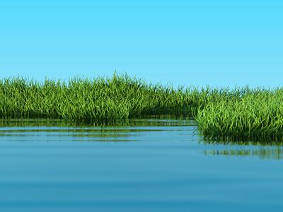Grass Test direction 3d motion graphics c4d cinema4d