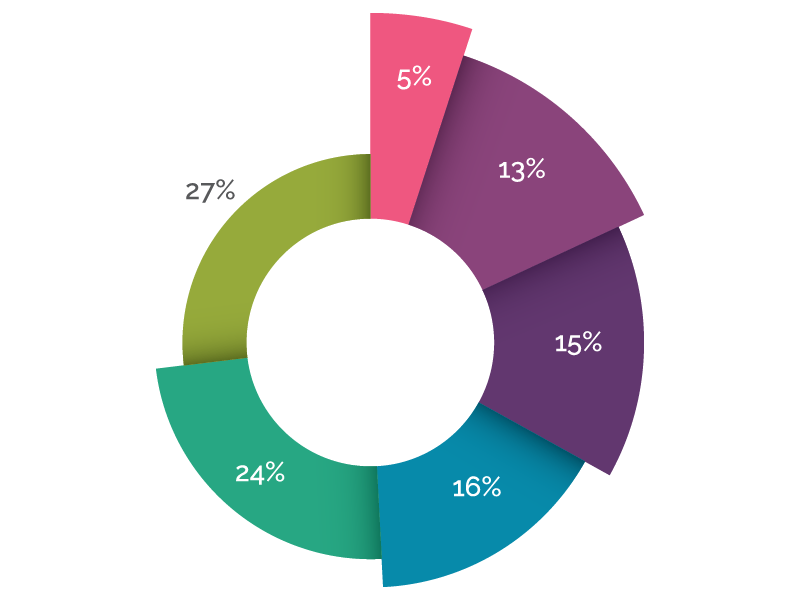 Alpha Pie Chart By Jess Colvin Dribbble