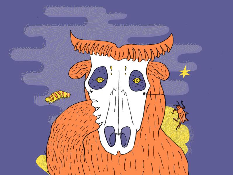 Halloween Flyer for the California Academy of Sciences design halloween animals vector illustration illustration