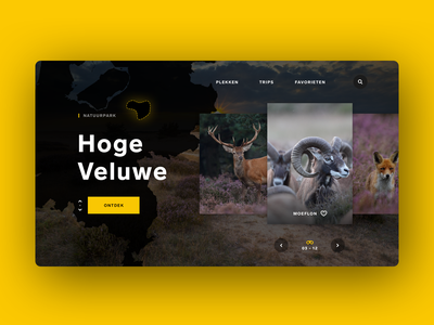 Spotting wildlife in the Netherlands wildlife slider website nature outdoor animals