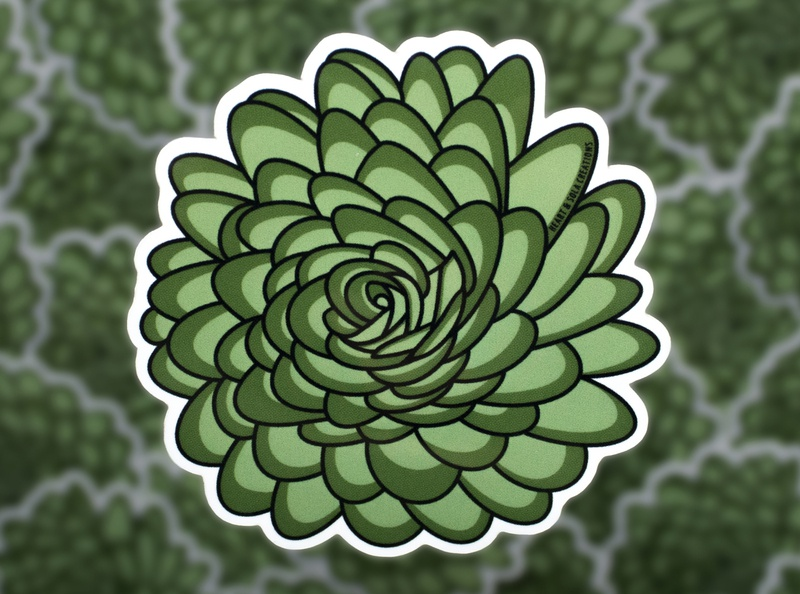Green Succulent Sticker flowers illustration flower sticker succulent