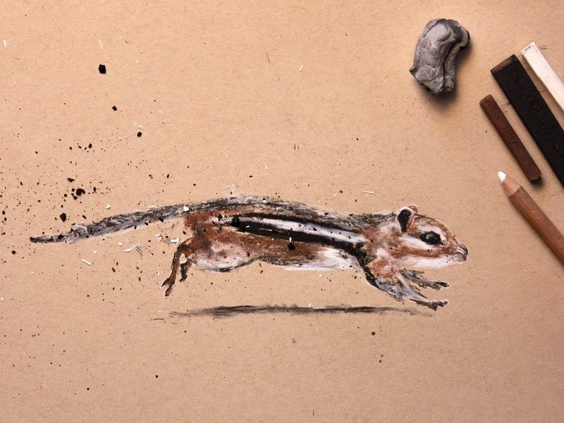 Chipmunk sketch drawing 2d jump leap animal art illustration charcoal cute animal chipmunk