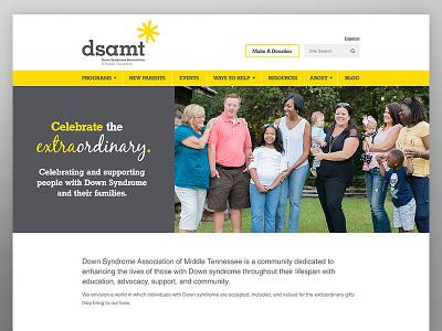 DSAMT Website 2017 website nonprofit