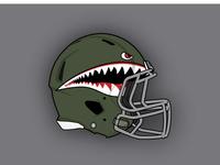New York Jets Helmet Concept